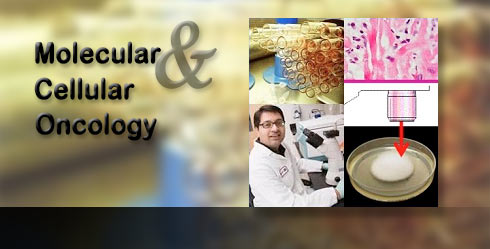 Molecular & Cellular Oncology